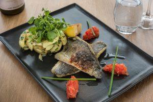 Fish dish_1